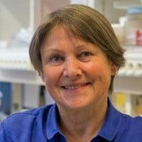 Monique Lafon conseiller scientifique de Neurophoenix